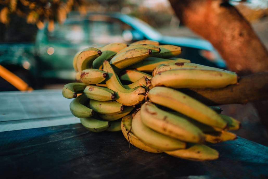 why banana agricultural investment