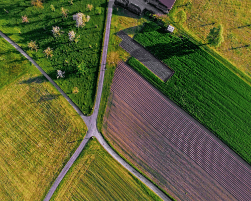 Land Selection