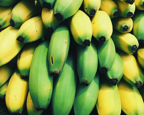 Agricultural InvestmentBanana Productivity